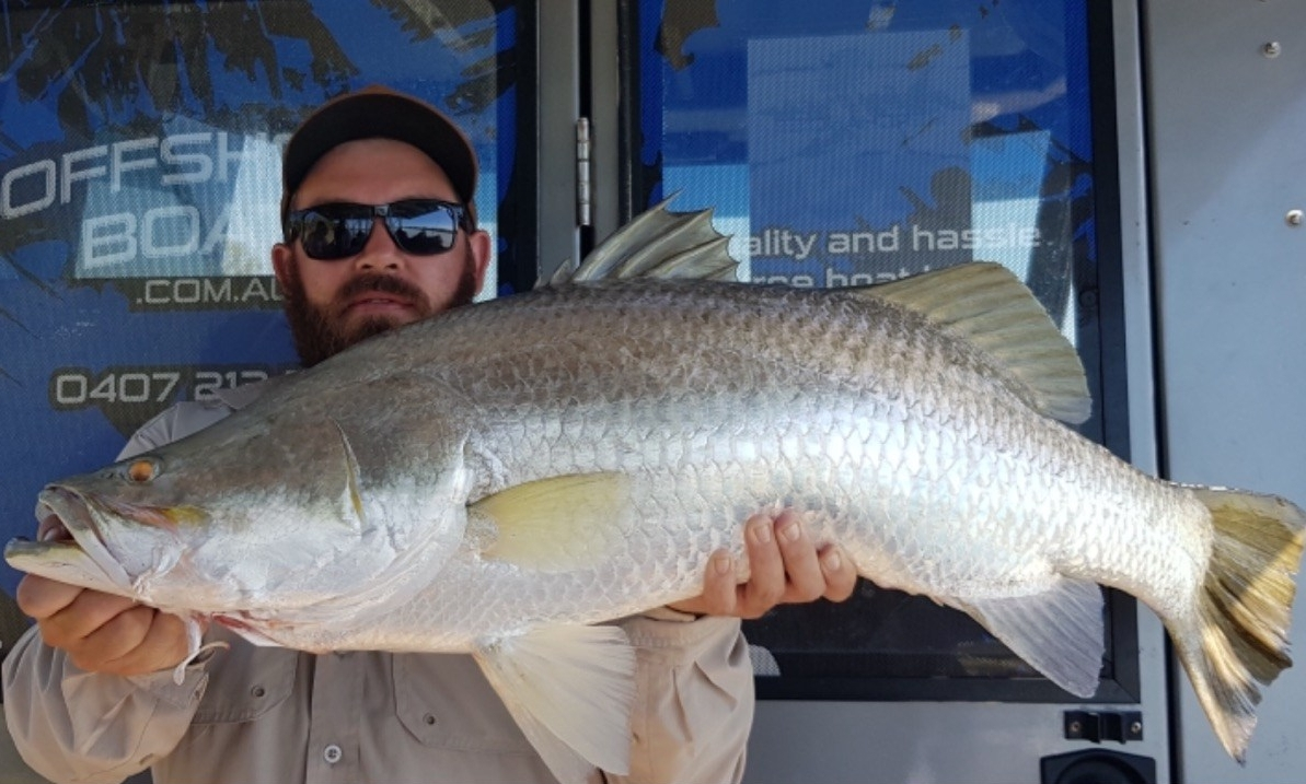 saltwater barramundi caught on offshore boats darwin fishing charter