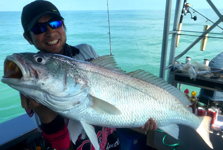 Jewfish caught on offshore boats darwin fishing charter