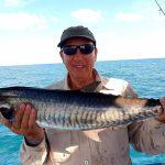 Spanish Mackerel with Offshore Boats - Darwin's Premier Reef & Sport Fishing Charters